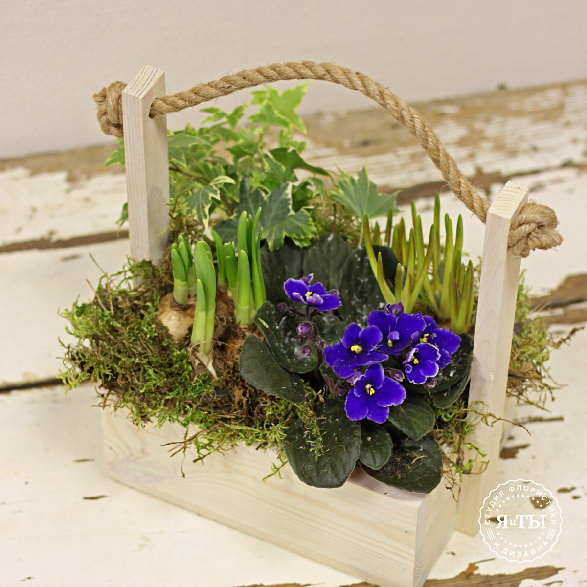 Композиция из луковичных растений в деревянном ящике